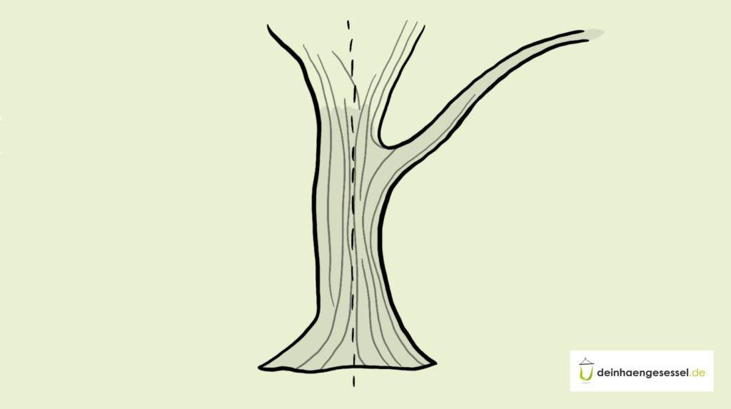 Zu sehen ist ein Baumstamm, der sich zum Bau eines Hängesessels eignet