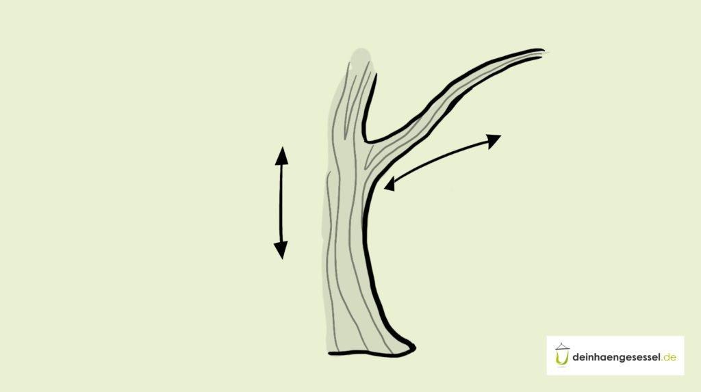 Zu sehen ist eine Nahaufnahme des Baumstamms