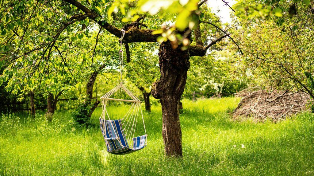 Zu sehen ist ein Hängesessel, der an einem Ast an einem Baum in einem Garten hängt