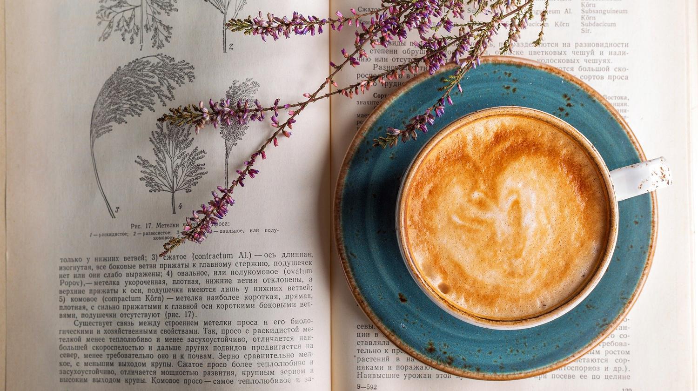 Zu sehen ist eine Kaffeetasse, die auf Hängemöbeln zu Flecken führen kann